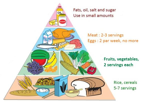 A look at the importance of nutrient and the need to have a balanced diet