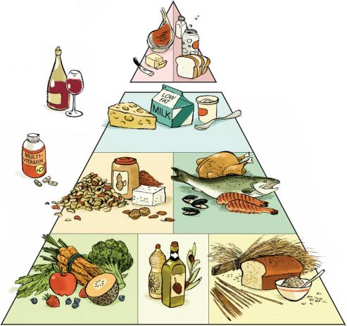 Food pyramid 2015 for adults